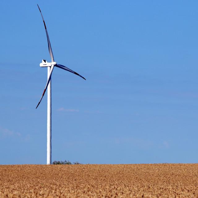 """wind turbine on wheat field renewable energy summer season"" stock image"
