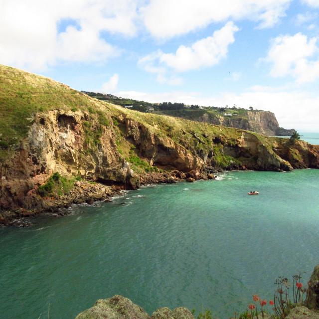 """Coastal cliffs at Godley Head, New Zealand"" stock image"