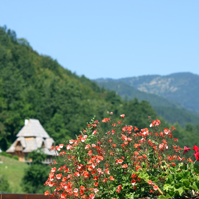 """flowers and cottages mountain landscape summer season"" stock image"
