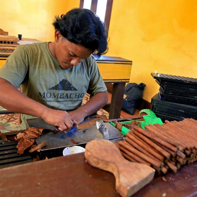 """Handmade Cigars"" stock image"