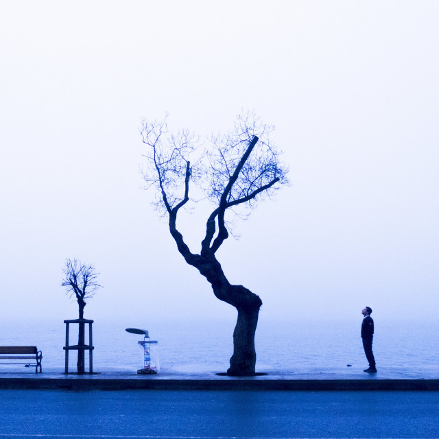 """A foggy day"" stock image"