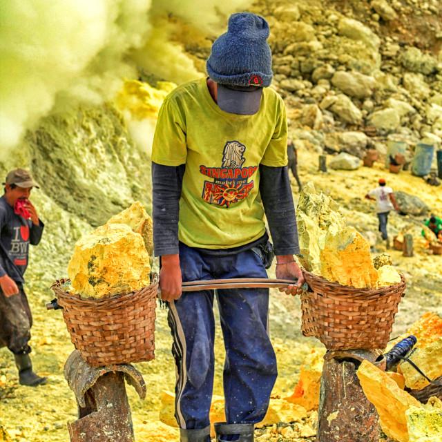 """Sulphur miner"" stock image"