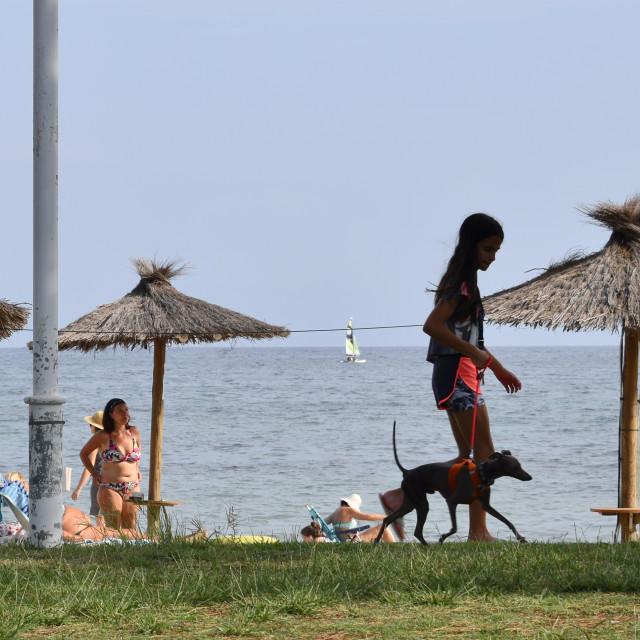 """Girl walking dog Spain"" stock image"