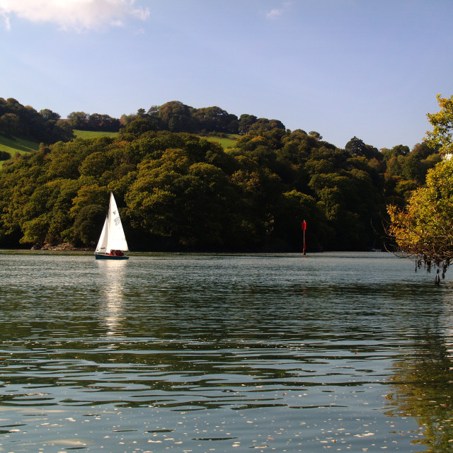 """""""Sailing on the River Dart"""" stock image"""