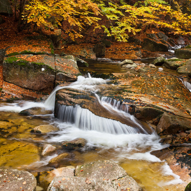"""Waterfall in Autumn Scenery"" stock image"