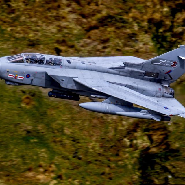 """41 Squadron TES Tornado GR4 EB X"" stock image"