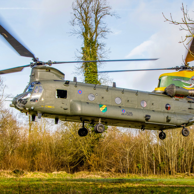 """""""27 Squadron Chinook Nelly"""" stock image"""