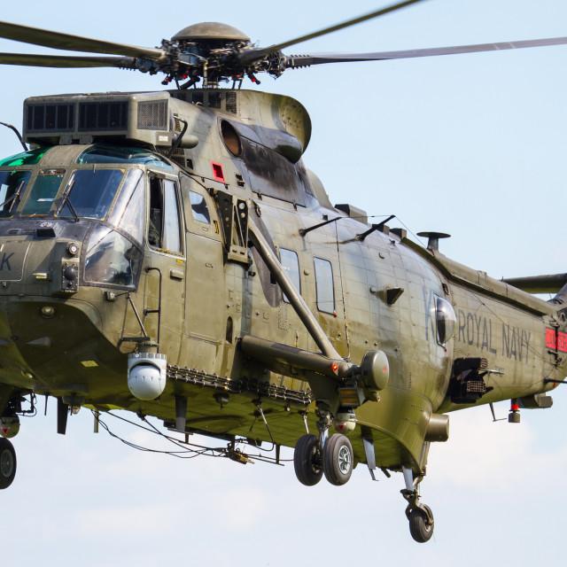 """Commando Sea King Junglie"" stock image"