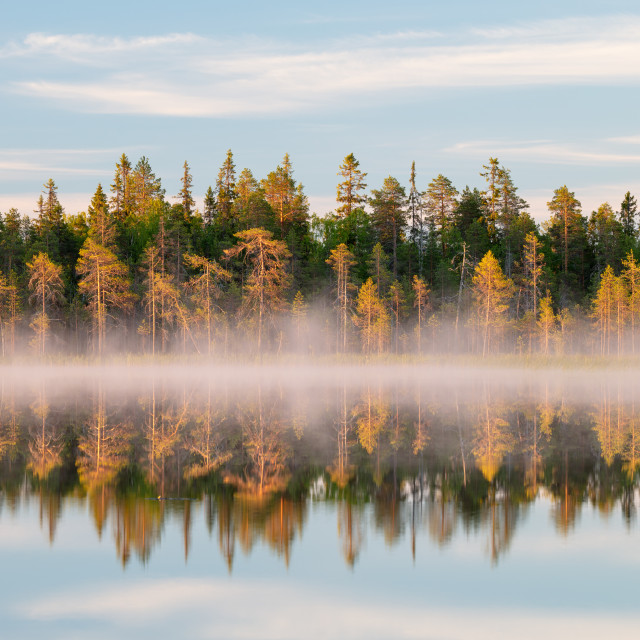 """""""Morning by the lake"""" stock image"""