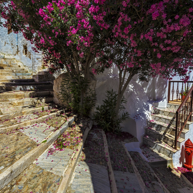 """""""A Street in Ano Syros."""" stock image"""