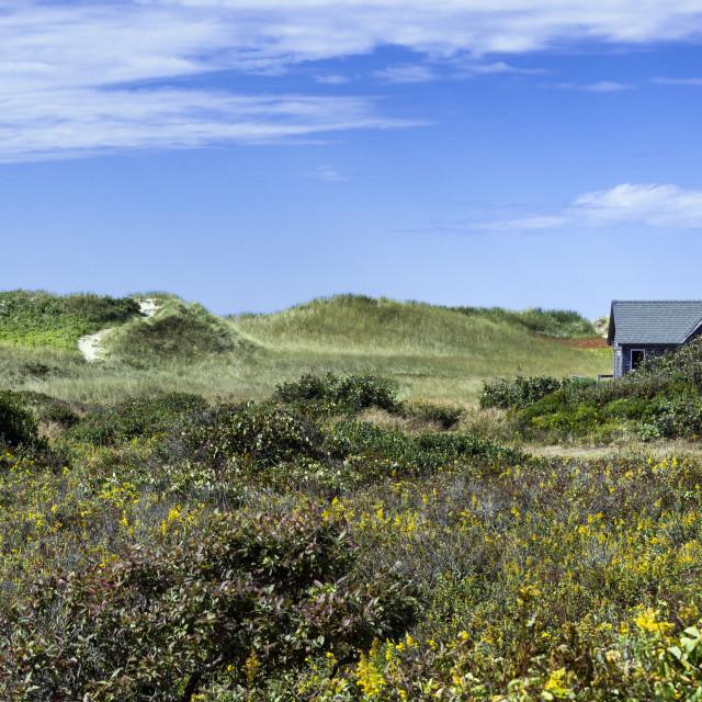 """Dune shack, Aquinnah, Martha's Vineyard"" stock image"