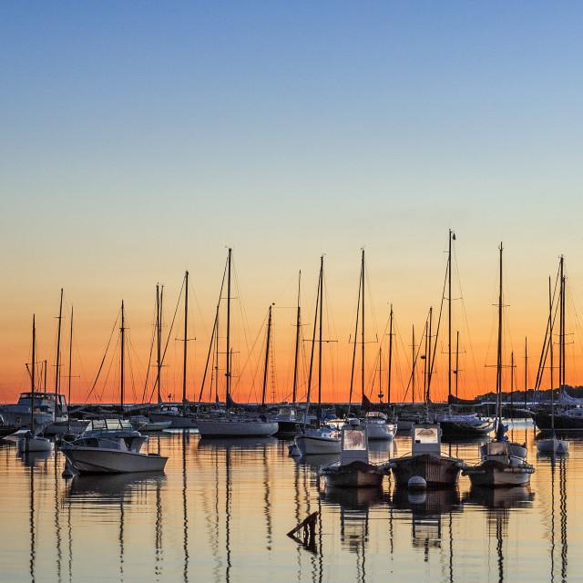 """Sunrise sailboats in Vineyard Haven harbor, Martha's Vineyard, Massachusetts, USA"" stock image"