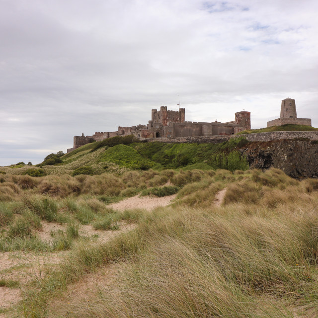 """Bamburgh Castle over the dunes"" stock image"