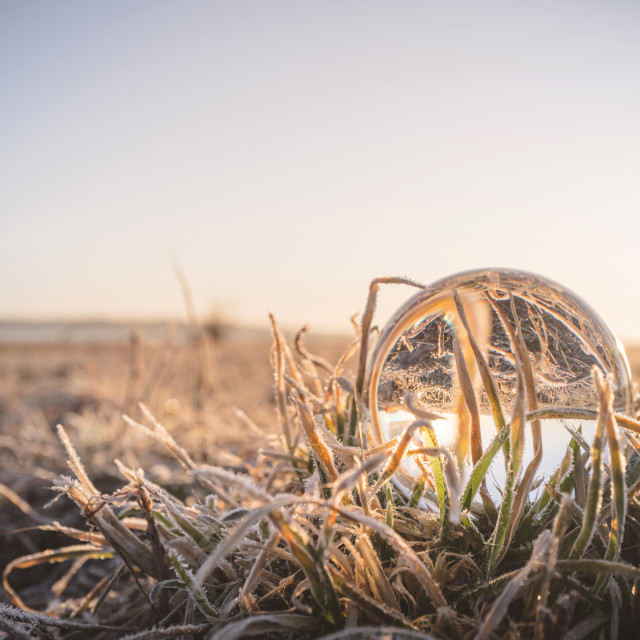 """""""Crystal ball in frozen grass in the sunrise"""" stock image"""