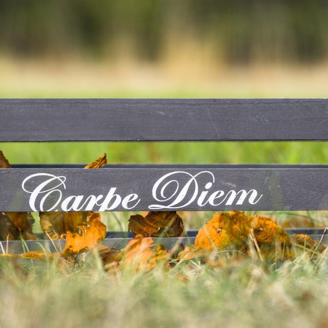 """Wooden box with the phrase Carpe Diem"" stock image"