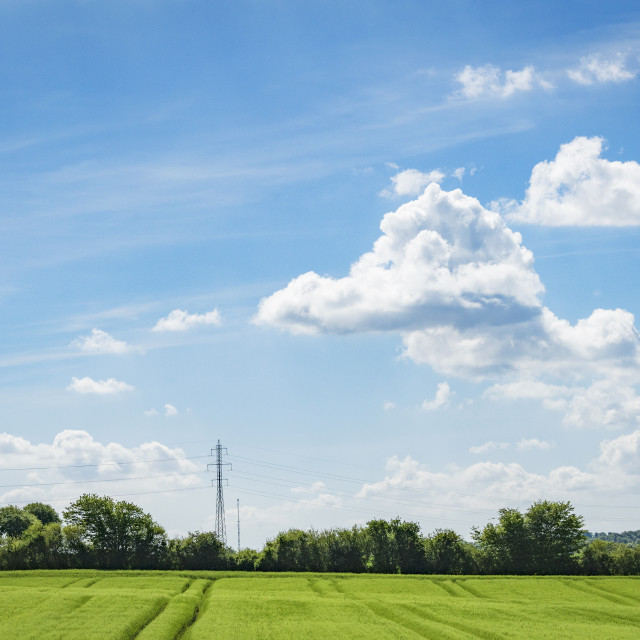 """Green fields in a rural countryside landscape"" stock image"