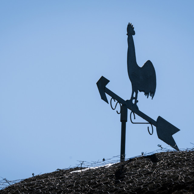 """Weathervane silhouette of a rooster"" stock image"