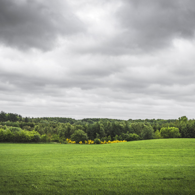 """Cloudy weather over a rural green field"" stock image"