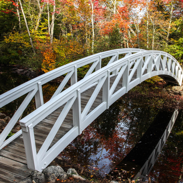 """""""Somesville wooden bridge with reflections in water"""" stock image"""