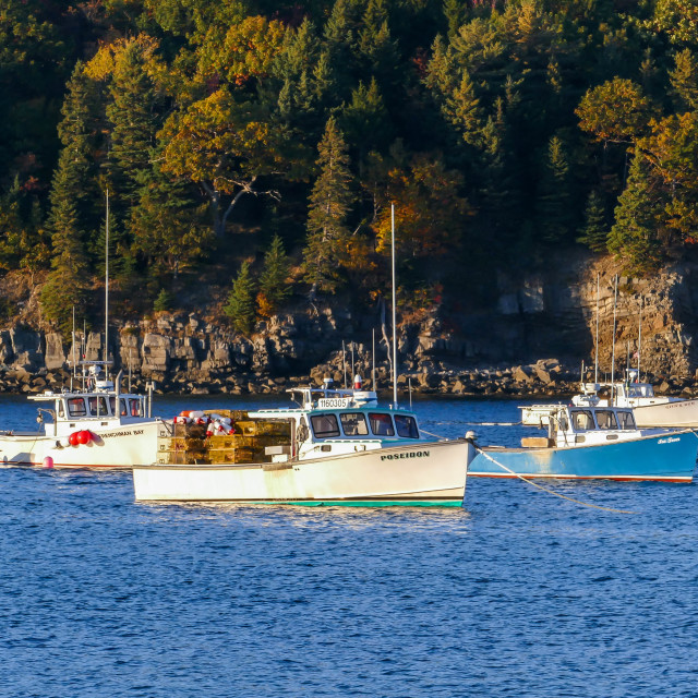 """""""Fishermans boats is docking in Frenchman Bay"""" stock image"""