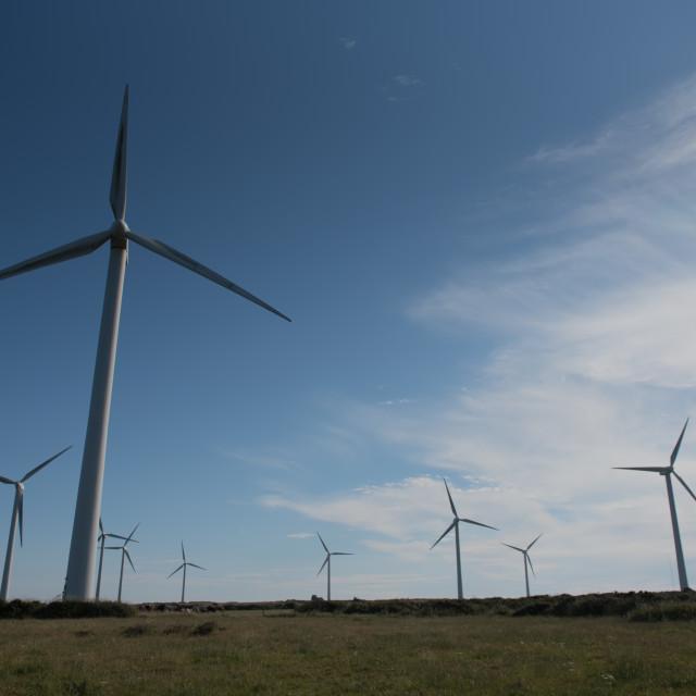 """Wind farm against blue sky"" stock image"
