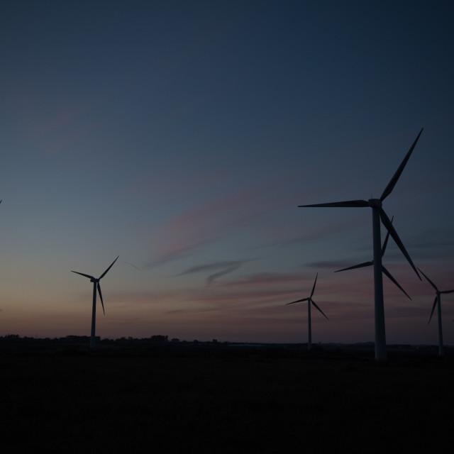 """""""Wind farm against dusk sky"""" stock image"""