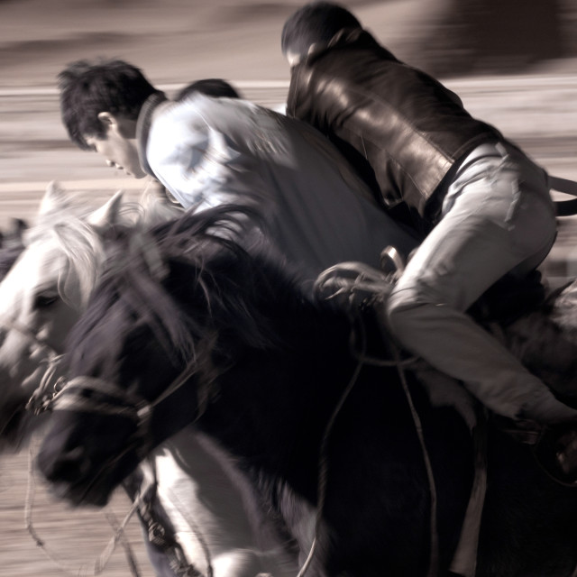 """""""Mongolian Polo in Action"""" stock image"""