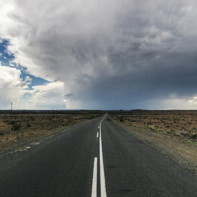 """""""Desert Rain"""" stock image"""
