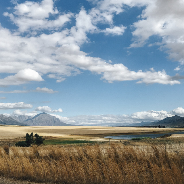 """""""Tulbagh Valley"""" stock image"""