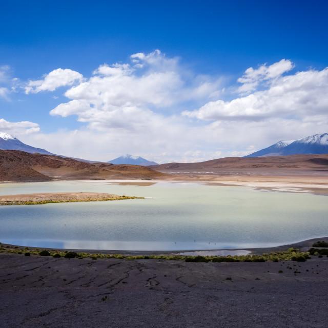 """Laguna Honda in sud Lipez Altiplano reserva, Bolivia"" stock image"