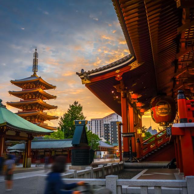 """""""Hondo and pagoda at sunset in Senso-ji temple, Tokyo, Japan"""" stock image"""