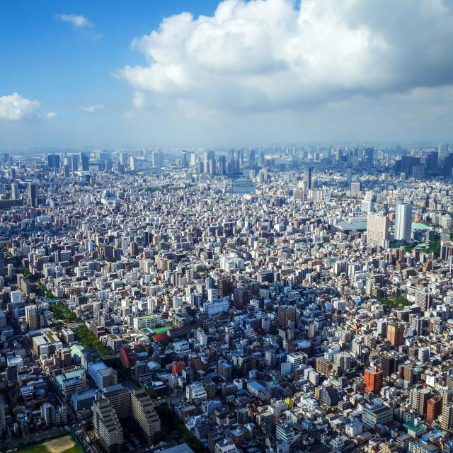 """Tokyo city skyline aerial view, Japan"" stock image"