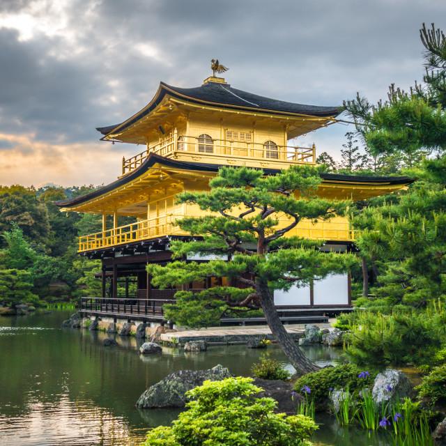 """""""Kinkaku-ji golden temple, Kyoto, Japan"""" stock image"""