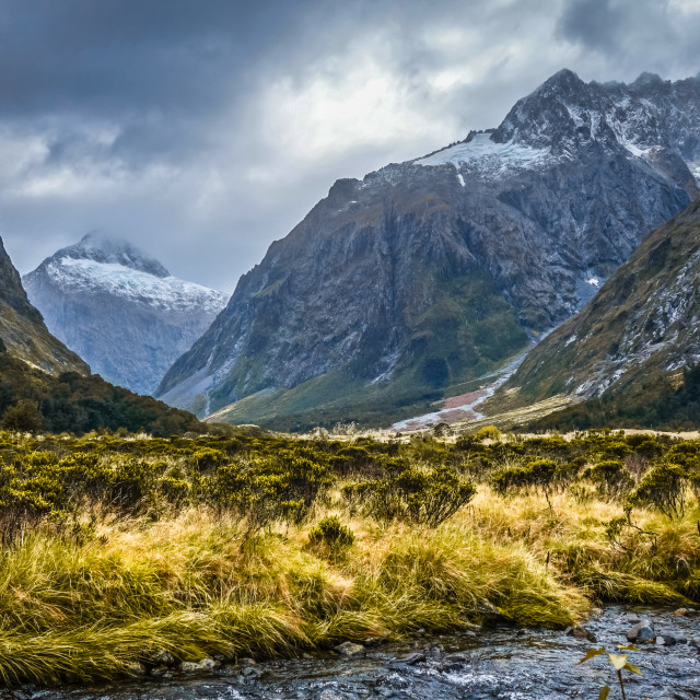 """""""River in Fiordland national park, New Zealand"""" stock image"""