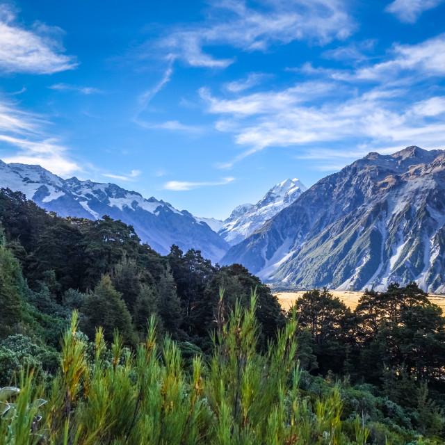 """""""Aoraki Mount Cook, New Zealand"""" stock image"""