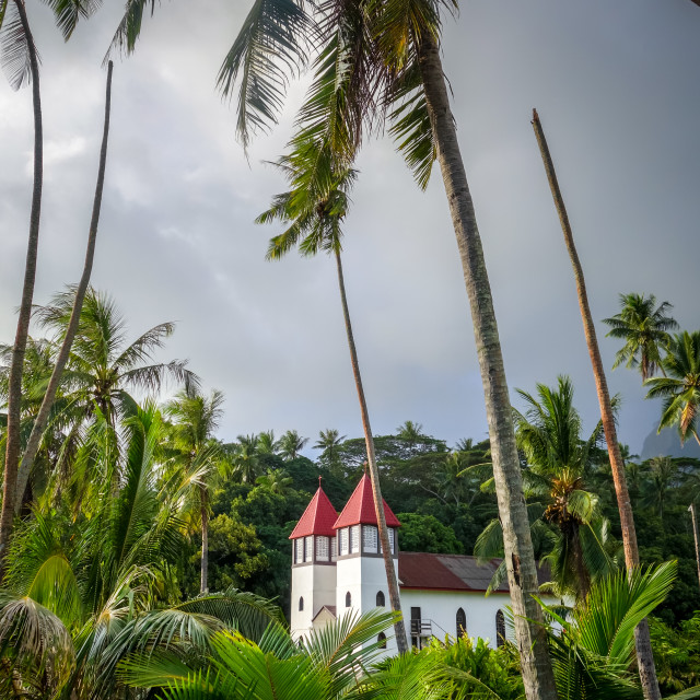 """Haapiti church in Moorea island jungle, landscape"" stock image"