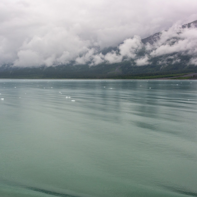 """Disenchantment Bay, Alaska"" stock image"
