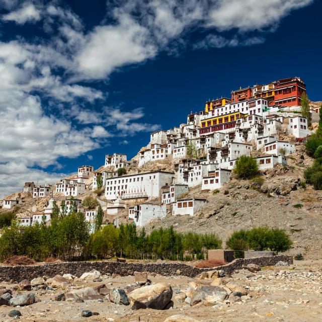 """""""Thiksey gompa, Ladakh, India"""" stock image"""
