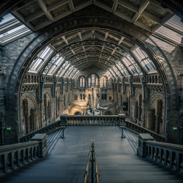 """Hintze Hall"" stock image"
