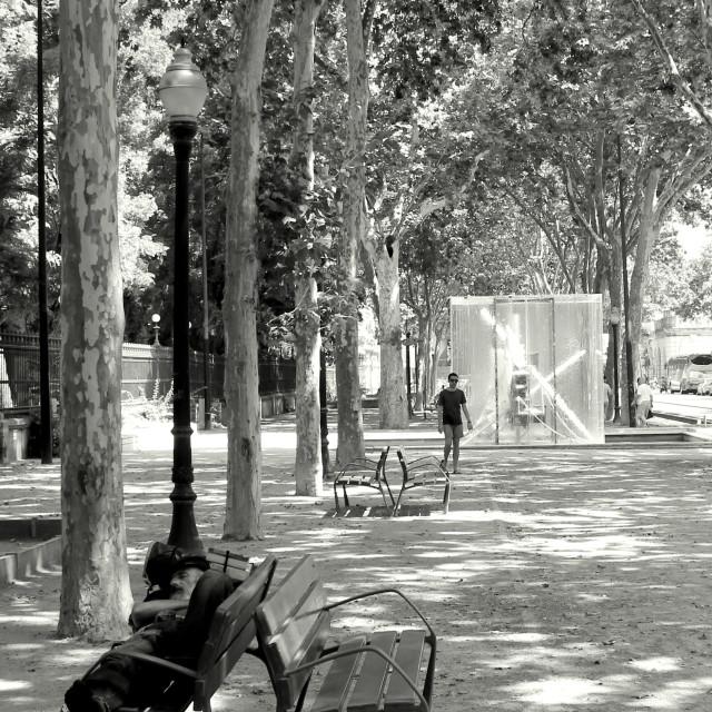 """""""Siesta in Barcelona"""" stock image"""