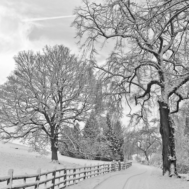 """Winter down the lane"" stock image"