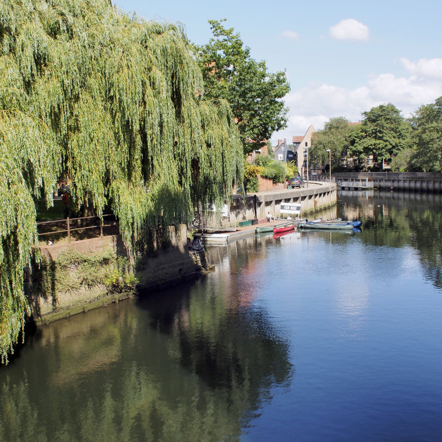 """River Wensum, Norwich"" stock image"