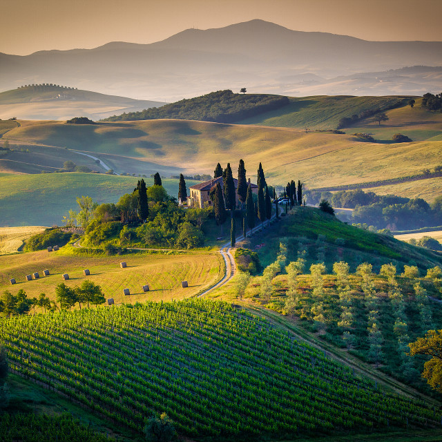 """""""The Tuscan Landscape"""" stock image"""