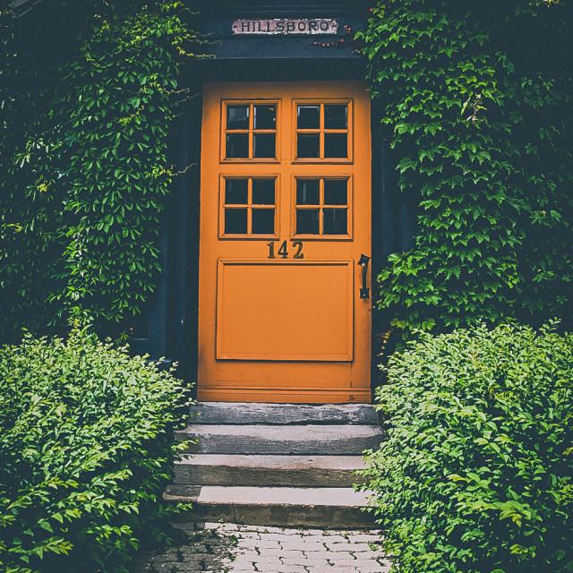 """""""Orange door envy"""" stock image"""