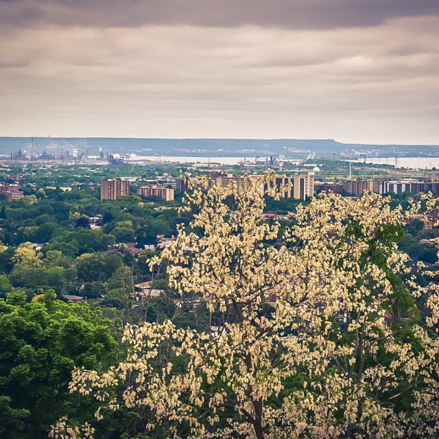 """A view over greater Hamilton"" stock image"