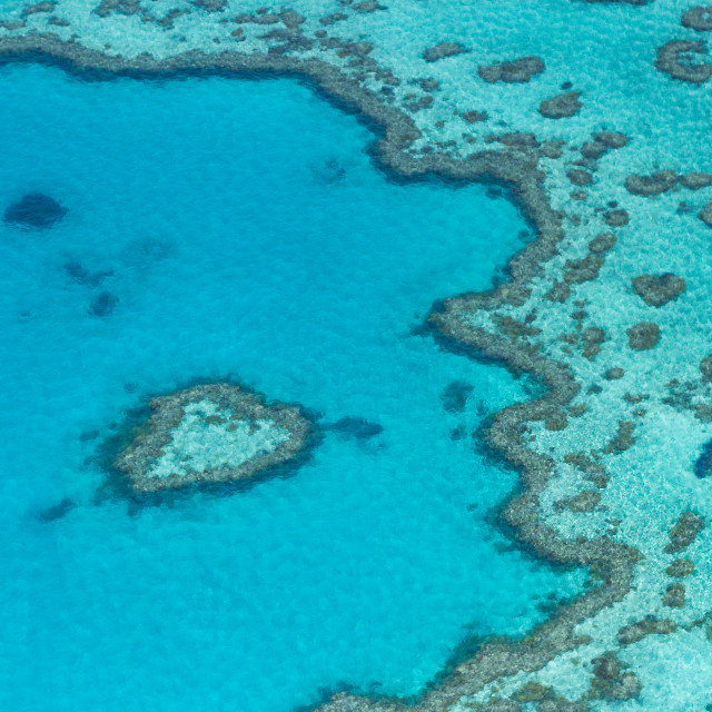 """Great Barrier Reef, Australia"" stock image"