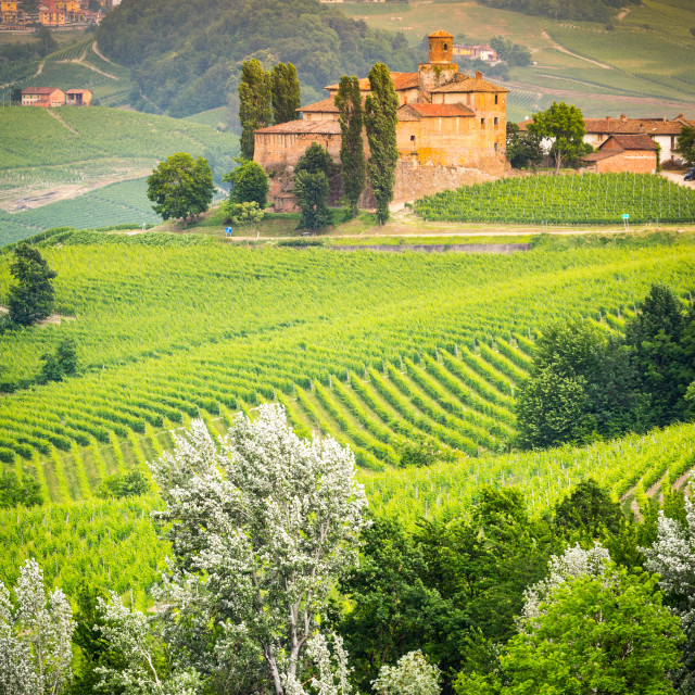 """Langhe"" stock image"