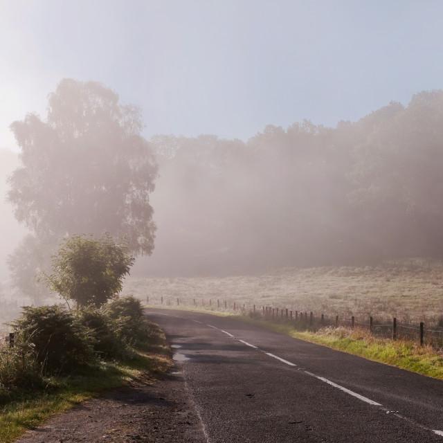 """Refreshing Morning Fog in Trossachs. Scotland"" stock image"