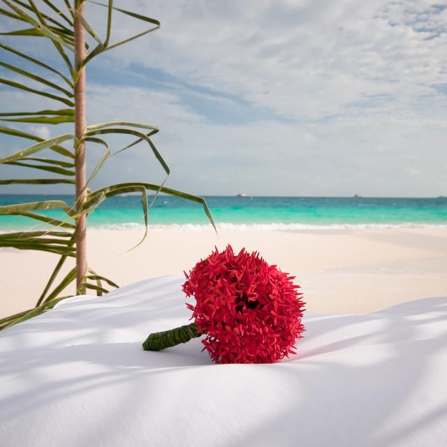 """Wedding Bouquet. Maldivian Resort"" stock image"