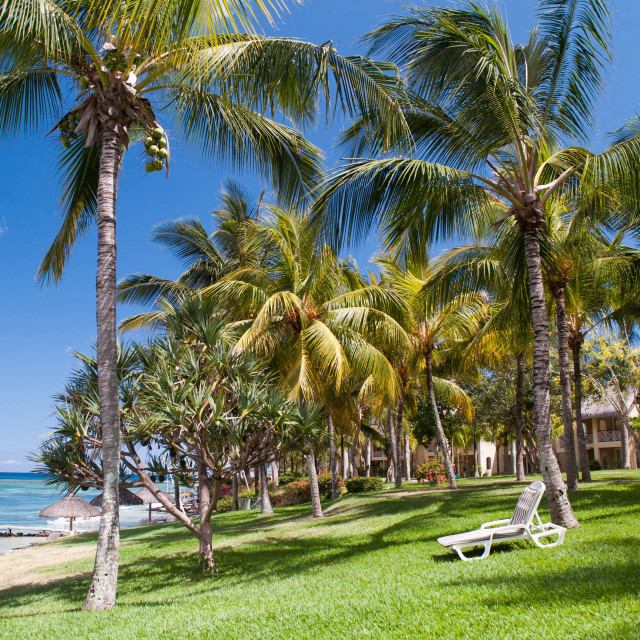 """Tropical Beach I. Mauritius"" stock image"